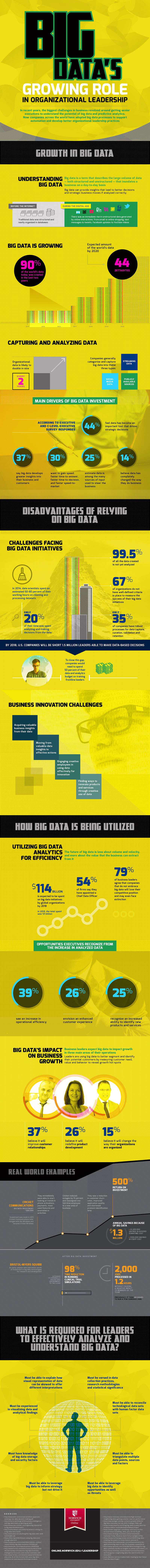 infographic about big data role in leadership