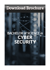 Download Cyber Security Program Brochure