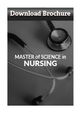 Download Master of Science in Nursing Brochure