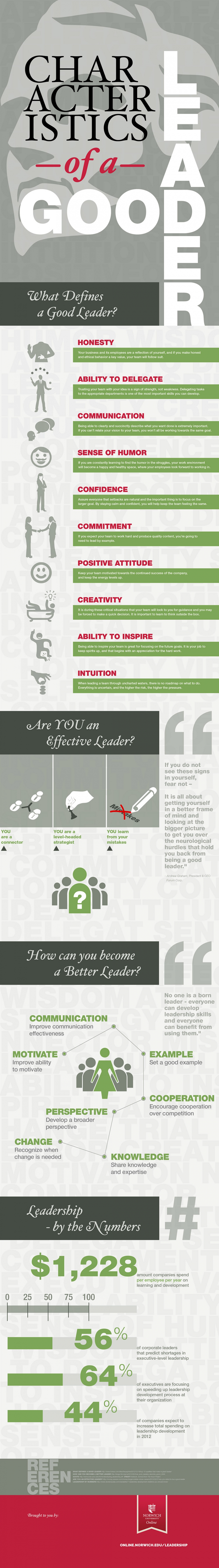 characteristics of a good leader infographic image